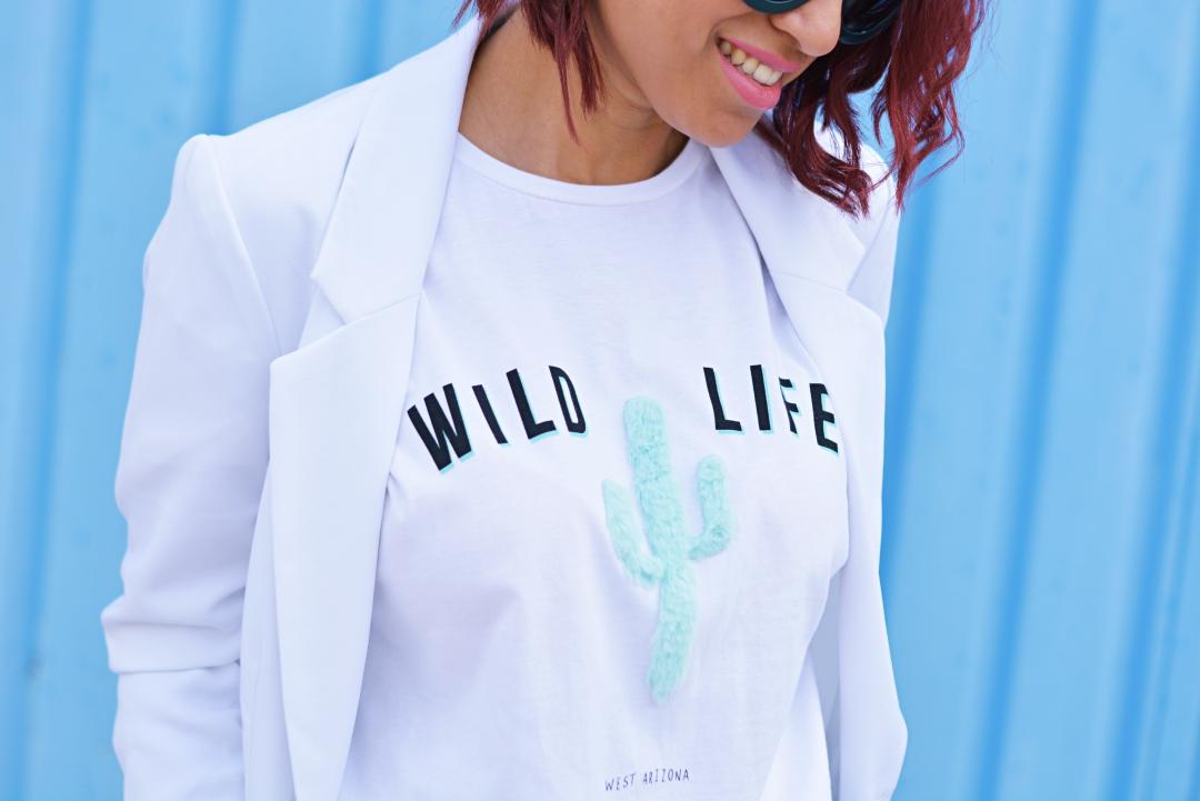 Wild life cactus